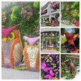 Flower Festival in Mazarik, Polanco