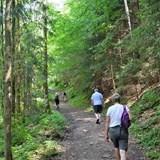 Hiking Excursions in the Foothills of Austria