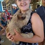 Sloth Holding