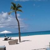Eagle Beach - Bucuti Beach Resort