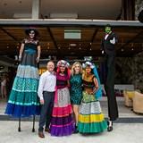 Protravel Peak Performers trip, Punta Mita, Mexico