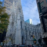 St.Patrick's Cathedral hidden in the city.