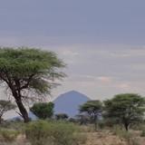 Africa Sunet