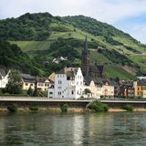Vineyards and Castles on Rhine River