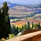 The Golden Val d'Orcia Italy