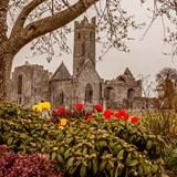 Ancient church near Shannon