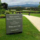 Welcome to Domaine Chandon!