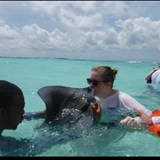 Best place to kiss a  stingray