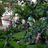 Sandals Negril Beachfront