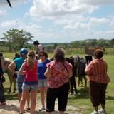 Horseback riding stop on tour