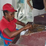 Rolling Dominican cigars