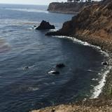 The rugged Pacific Coastline