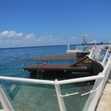 Cozumel Palace--dive right from the resort