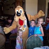 Goofy at Ohana's