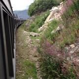White Pass & Yukon Scenic Railroad