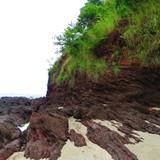 Beautiful rugged coast line at low tide!