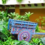 Costa Rican push cart!