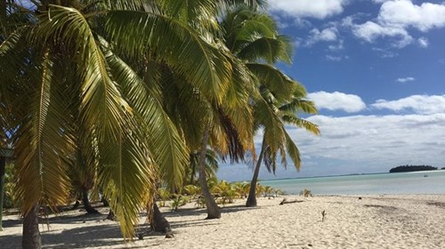 Beach from Lagoon Cruise