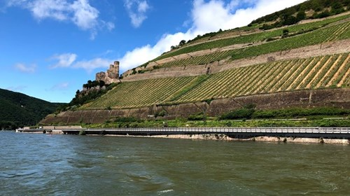 The Spectacular Rhine River Gorge