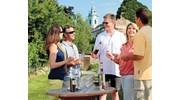 Wine Tasting along the Rhine