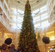 The Christmas tree at The Grand Floridian Resort a