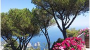 View from the top of Capri, sigh....