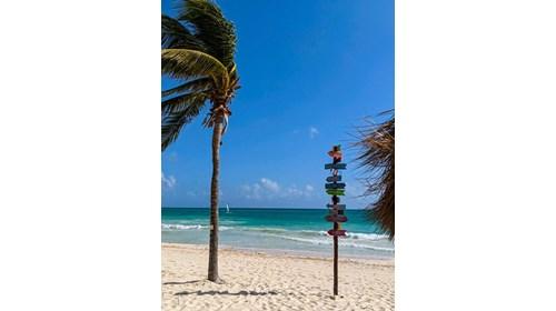 Let us make your vacation dreams come true