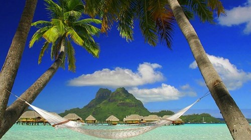 Which island would you like this hammock to be on?