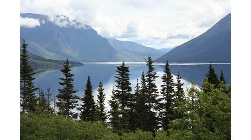 Alaska - the Yukon