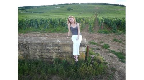 Vosne-Romanée, Burgundy FRANCE