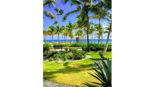 Dream Punta Cana May 2019