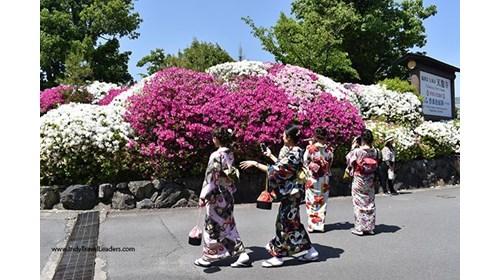 Tokyo Botancial Gardens