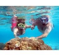 Drift Snorkel in Rangiroa Island (Tahiti)