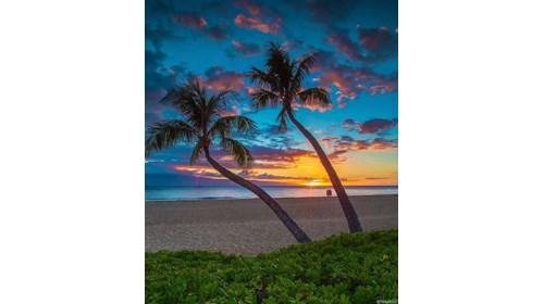 Maui Sunset 2020