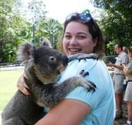 Koala Cuddles at the Australia Zoo