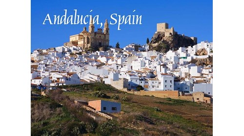 My roots: Andalucia, te amo.