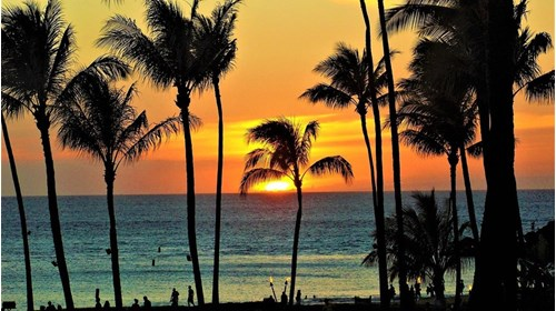 Favorite place in the world...Maui