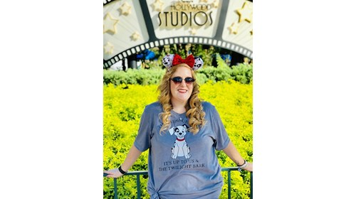 A Dream is a Wish Your Heart Makes.-Cinderella