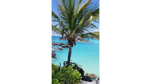 Greetings from Bermuda!
