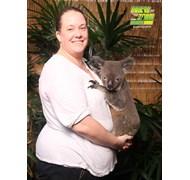 Holding a Koala - Cairns Dome