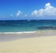 The family loved the beaches in the Dominican Repu