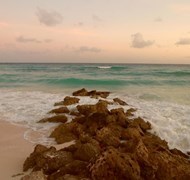 Turtle Beach Resort Barbados