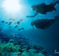 Scuba - always included at Sandals and Beaches