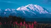 Alaska's Denali