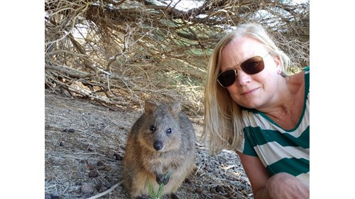 Getting a Quokka Selfie on Rottnest, Australia