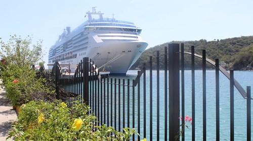 Amazing cruises, all around the world!