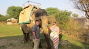 Before we went on a sunset elephant ride