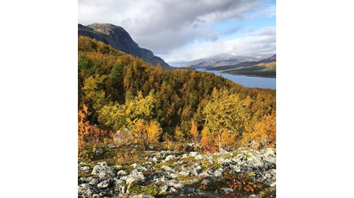 Swedish Lapland's Kungsleden Trail